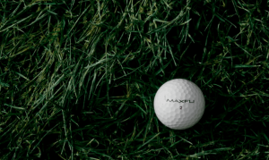 golf ball sitting in the rough grass